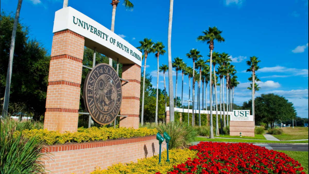 Photo of Everything About The University of South Florida